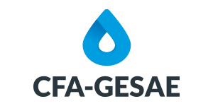 CFA – GESAE